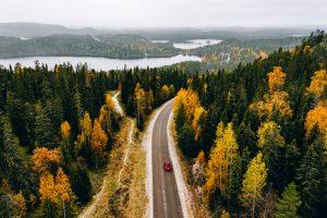 Autumn driving risks